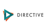 directive consulting review