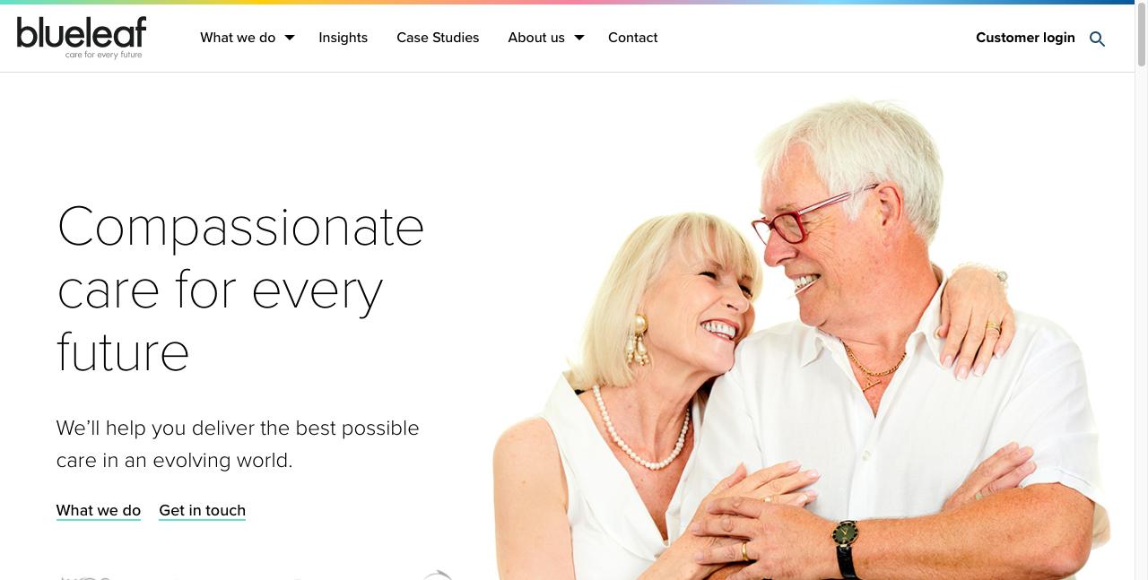 blueleaf b2b website design