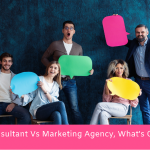 Digital Marketing Consultant Vs Digital Marketing Agency, What's Good for You?